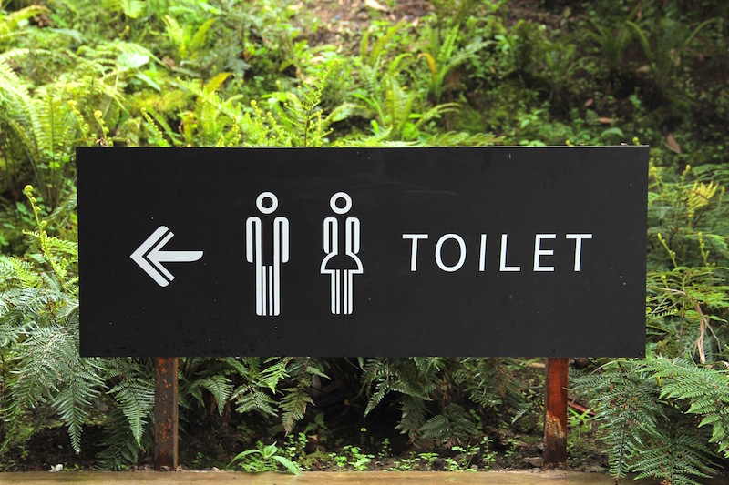 toilet 20 Reasons I Quit SugarDiet Nutrition